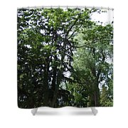 Old Section Mt Hope Cemetery Shower Curtain