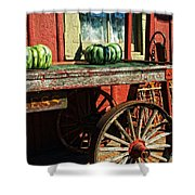 Old Station Cart Shower Curtain