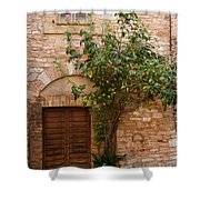 Old Stone House With Plants  Shower Curtain