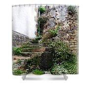 Old Stone Steps Shower Curtain