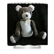 Old Teddy Bear Veijo Shower Curtain