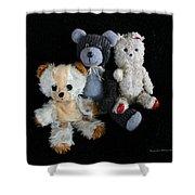 Old Teddy Bears Shower Curtain
