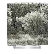 Old Time Autumn Shower Curtain