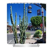 Old Town Cactus Shower Curtain