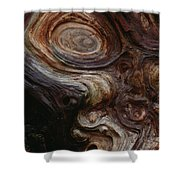 Old Tree Trunk With Knots And Patterns  Shower Curtain
