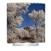 Old Wagon  Horse Frost And Jim Mountain   #3945 Shower Curtain