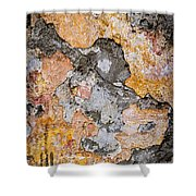 Old Wall Abstract Shower Curtain