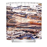 Old Weathered Log On The Sea Shore Shower Curtain