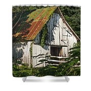 Old Whitewashed Barn In Tennessee Shower Curtain by Debbie Karnes