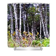 Old Wood Stand Painterly Style Shower Curtain