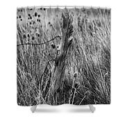 Old Wooden Fence Post In A Field Shower Curtain