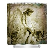 Old World Shower Curtain