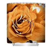 Old World Roses  Shower Curtain