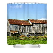 Olden Beauty Shower Curtain