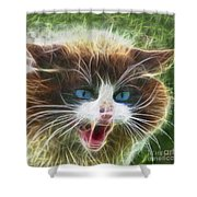 Ole Blue Eyes - Square Version Shower Curtain
