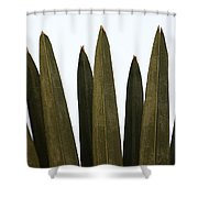 Olive Palm Shower Curtain