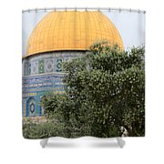 Olive Tree Dome Shower Curtain