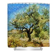 Olive Tree On Van Gogh Manner Shower Curtain