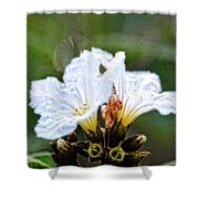 Olive You - Olive Flower Art By Sharon Cummings Shower Curtain
