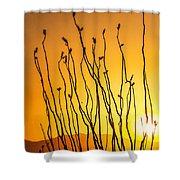 Oliver Lee Sunset Shower Curtain