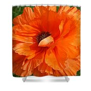 Olympia Orange Poppy Shower Curtain