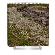 Olympia Ruins And Wild Flowers   #9678 Shower Curtain