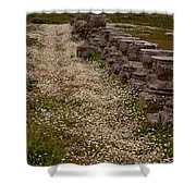 Olympia Ruins And Wild Flowers   #9679 Shower Curtain