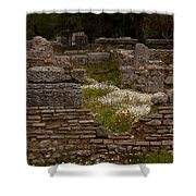 Olympia Ruins And Wild Flowers   #9684 Shower Curtain