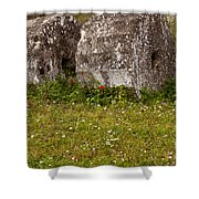 Olympia Ruins And Wild Flowers   #9821 Shower Curtain