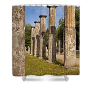 Olympia Ruins Shower Curtain