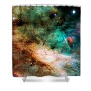 Omega Swan Nebula 2 Shower Curtain