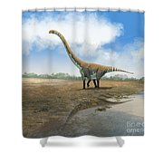 Omeisaurus Tianfuensis, An Euhelopus Shower Curtain by Roman Garcia Mora