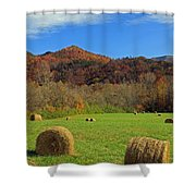 On A Roll Shower Curtain