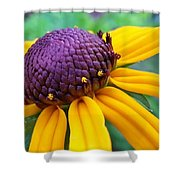 On A Warm Summer Day Shower Curtain