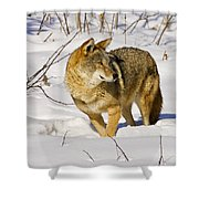 On Alert Shower Curtain