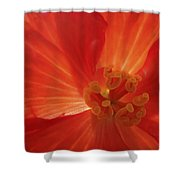 On Fire For You Shower Curtain