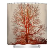 On Fire In The Fog Shower Curtain by Lois Bryan