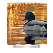 On Golden Pond Shower Curtain
