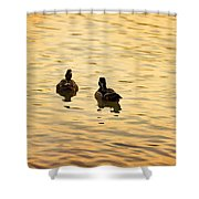 On Golden Pond Ducks Shower Curtain