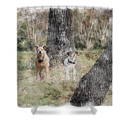 On Guard - Featured In Comfortable Art Group Shower Curtain