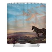 On Lookout Shower Curtain