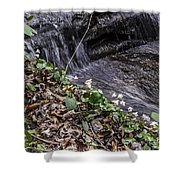On The Banks Of The Rapids Shower Curtain