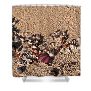 On The Beach 02 Shower Curtain