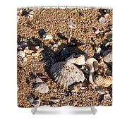 On The Beach 03 Shower Curtain