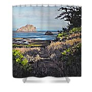 On The Coast Shower Curtain