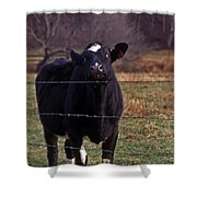 On The Edge Of Madness Shower Curtain