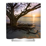On The Edge Of The Surf Shower Curtain