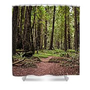 On The Enchanted Path Shower Curtain