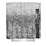 On The Fence Bw Shower Curtain