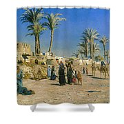 On The Outskirts Of Cairo Shower Curtain